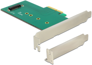 Delock M.2 (NVMe) PCIe Interface