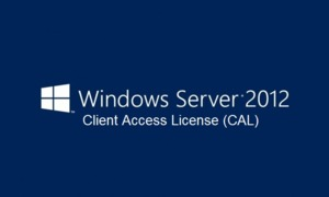 SB Win Server 2012 1 Clt User CAL