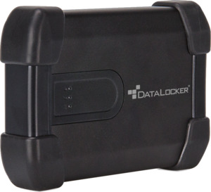 DD DataLocker Basic H300 2 To