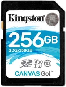 Kingston Canvas Go SD