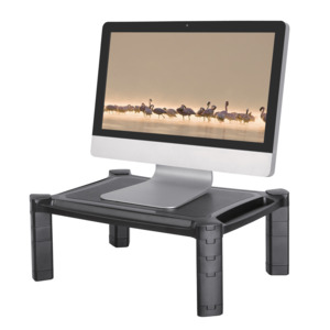 NewStar Monitor/Notebook Stand Black