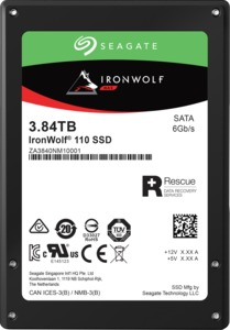 Seagate IronWolf 110 interne SATA SSDs