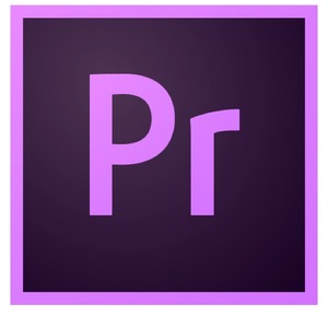Adobe Premiere Pro for teams, Level Details: Level 1 1 - 9, 1 User, 12 Months, Team Licensing Subscription New, Multiple Platforms, Multi European Languages