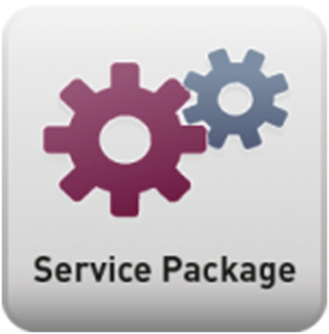 bintec Service Package Small